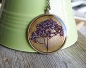 Botanical Necklace Spirea Plant Botanical Jewelry Pressed Flowers Resin Antique Brass Chain