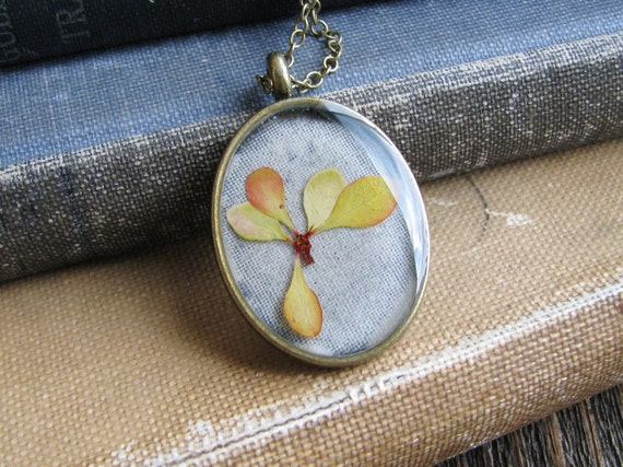 Nature Pendant Yellow Red Botanical Jewelry Barberry Leaves Resin Necklace Antique Brass Chain
