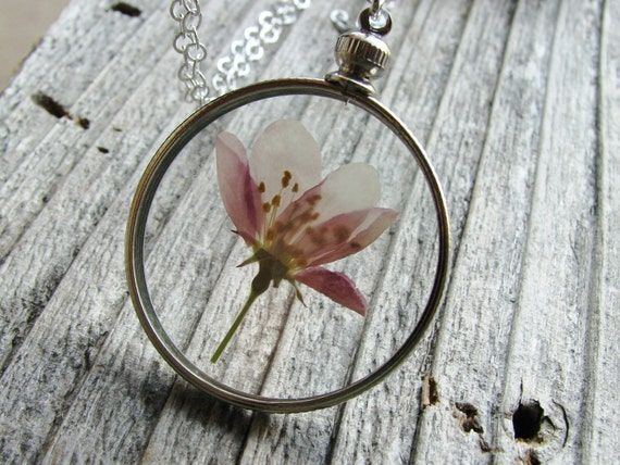 Framed Glass Pendant Pressed Flower Necklace Purple Flowering Crabapple Tree Sterling Silver Chain Nature Inspired Botanical Jewelry