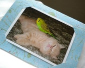 Friends, Partners, Cute, Nap time, Great Handmade Greeting Card