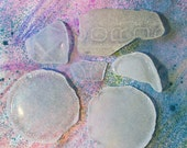 6 Pieces Frosted Sea Beach Glass Bottle Parts