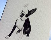 Pet Sketch Note Cards (Set of 10)