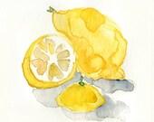 Lemons Study Original watercolor painting in Yellow Lemon hues