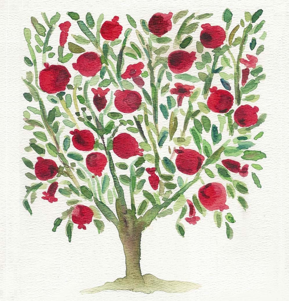 pomegranate tree in the kite runner The symbols of the blue kite, the slingshot, the pomegranate tree,  the kite runner or any similar topic only for you order now.