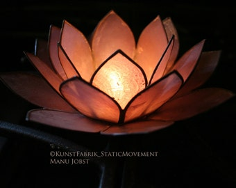 LOTUS LIGHT series 1  Original Color Art Photograph