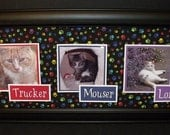Cats and Dogs Photo Keepsake Frame - Personalized - Paw Print Background - Framed 8x20 (shown) or 10x20 - 5 Backgrounds to Choose From