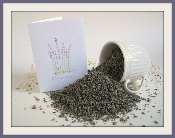 10 cups Lavender with Notecard