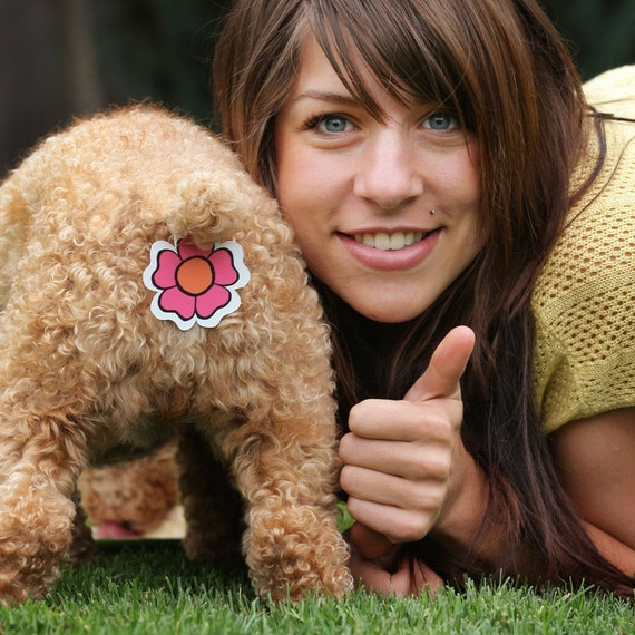 Smiley Face Rear Gear...Butt covers for your dog or cat