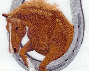 HORSE THRU HORSESHOE- Machine Embroidery Quilt Block (Azeb)