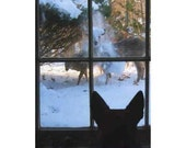 funny holiday christmas card set of 8 German Shepherd Dog and Deer in the snow