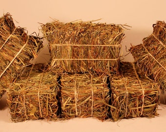 Mini Hay Bales - Set of Six