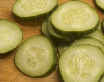 Classic Marketmore Cucumber