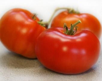 Organic Silvery Fir Tree Tomato seeds