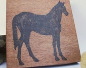House & Home feature - equestrian panel contemporary room decor, 4x4 inches