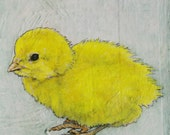 baby chick, hand drawn original mixed media artwork