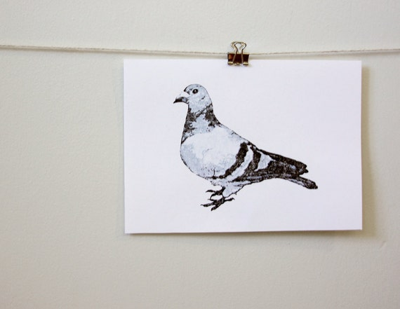 urban pigeon, contemporary minimal room decor