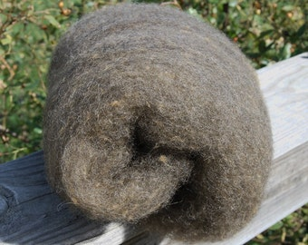 Black Shetland and Tussah Silk Batts - 4 ounces