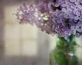 Spring Perfume - Fine Art Photograph - 8x10