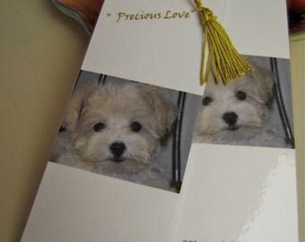 Malti-Poo Puppy Love Fine Art Photo Bookmarks Set Of Two- Maltese  Poodle Puppy Fine Art Photo
