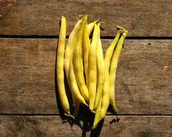 Yellow Wax Bush Bean // organic vegetable seeds // heirloom seeds from our farm // eco friendly // organic gardener // summer planting