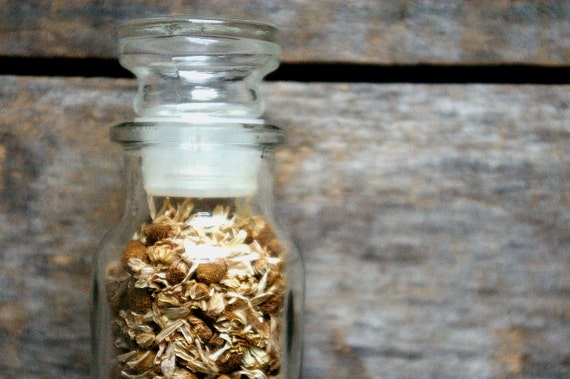 Organic Dried German Chamomile, 3 oz vintage glass jar, harvested on our small scale farm