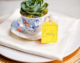20 Succulents, Succulent Favors, Fun Tea Party Idea, Garden Luncheons, Baby Showers, TREASURY ITEM