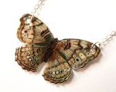 Grey Butterfly  - Necklace