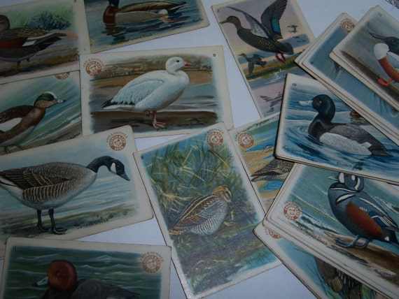 Victorian Trade Cards - 1924 - Complete Set of 30