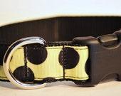 Medium Yellow Polka Dot Dog Collar