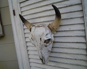 CLEARANCE SALE Bull Cow Bison Skull Head / Wall Decor / Man Cave / Faux Taxidermy / Weathered Tribal Wall Mount / The Yanaba / Ready to Ship