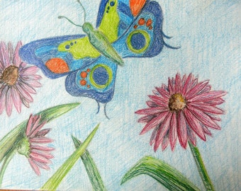 Butterfly and Cone Flower Drawing