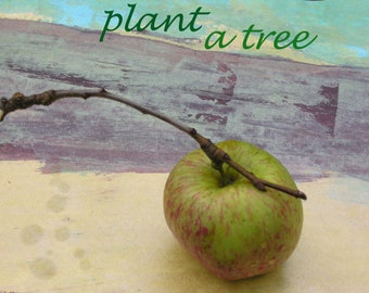 Plant a tree/ art postcard