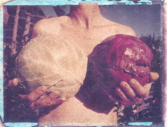 Garden of Breasts with cabbages/ photo postcard