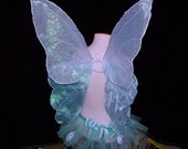 Gorgeous Aqua Wings and Tutu Set