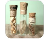 Specimen Collection in Vintage Vials - Mixed Lot - Qty. 3 - Lot 829