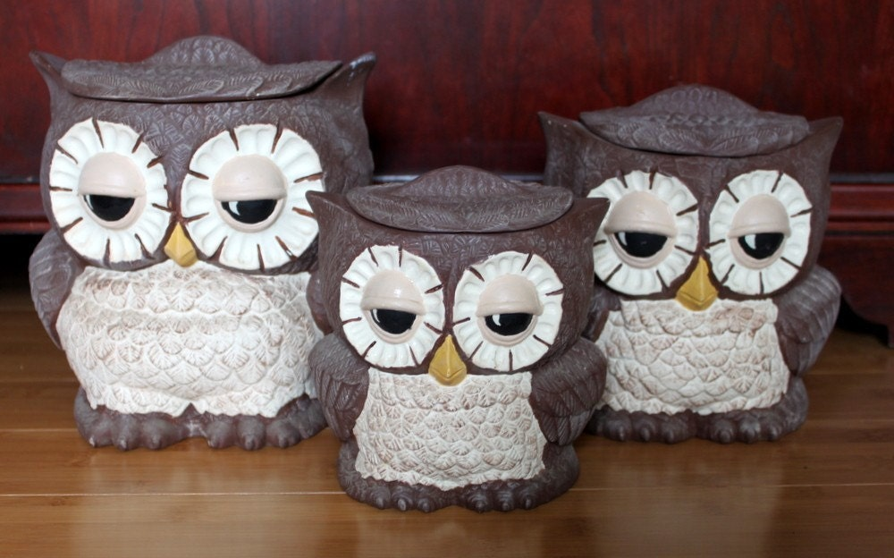 owl canisters for the kitchen best friends owl canisters set of 3 25389