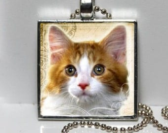 Sweet Kittie Cat Pendant - Orange and White - Square Art Photo with chain (your choice) Necklace