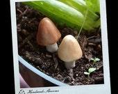 2 clay mini fairy dust mushrooms for your terrarium or planter