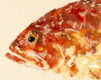 Red Grouper - Gyotaku Fish Rubbing - Limited Edition Print (21.5 x 11)
