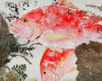 "Red Snapper - ""Snapper Fanfare"" - Gyotaku Fish Rubbing - Limited Edition Print (33 x 21.5)"