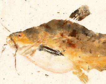 Butter Catfish - Gyotaku Fish Rubbing - Limited Edition Print (15 x 7.5)