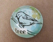 free bird bubble magnet