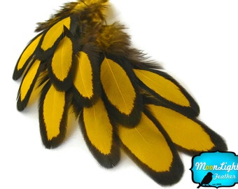 USA Patterned Feathers, 1 Dozen - YELLOW Laced Hen Saddle Loose Feather: 360