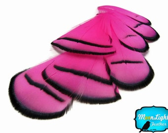Pheasant Feathers, 1 Dozen - PINK Lady Amherst Pheasant Tippet Feathers: 684