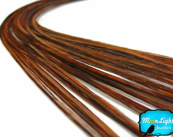 Hair Feathers, 10 Pieces - COACHMAN BROWN Thin Long Rooster Hair Extension Feathers : 330