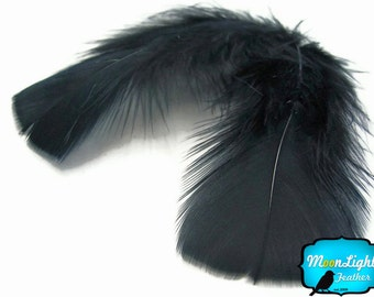 Turkey feathers, 1 Pack - BLACK Turkey Flat Plumage Body Feathers 0.50 oz. : 173