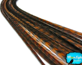 Real Hair Feathers, 10 Pieces - BROWN Thin Long Grizzly Rooster Hair Extension Feathers : 195