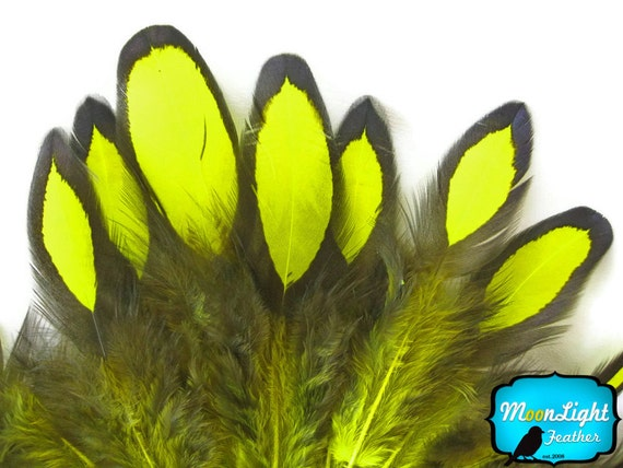Hen Feathers, 1 Dozen - Fluorescent YELLOW Laced Hen Loose Feather: 380