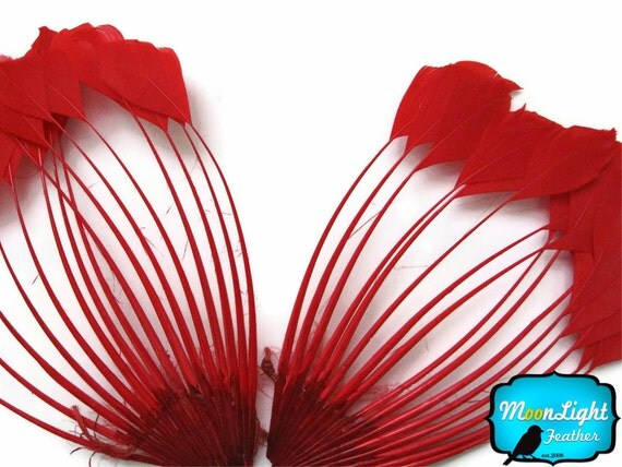 Feather Pad, 1 Piece - RED Duck Feather Center Stripped Fan : 683