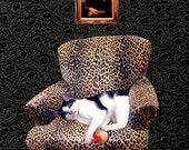 custom cat photo collage